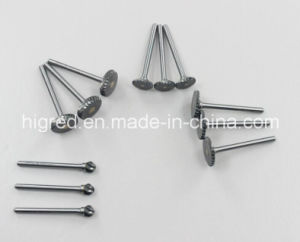 T Type Tungsten Carbide Rotary Burrs pictures & photos