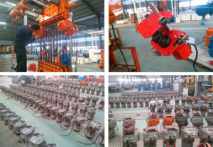 Machine Trolley 1t Electric Chain Lift with Hook pictures & photos