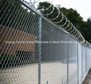 Galvanized Chain Link Wire Mesh pictures & photos