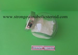Quality Training Powder Testosterone Propionate Test P Uniteston pictures & photos