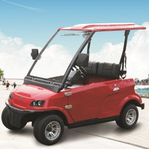 Ce Approved 2 Seater Electrical Cars Ce Approval (DG-LSV2) pictures & photos