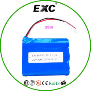 Lithium Ion/Li-ion Battery Manufacturer for LED Lights Trade Assurance pictures & photos