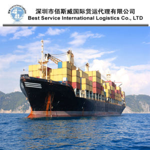 Ocean Shipping, Logistic Service as Sea Freight Forwarder to Worldwide (20′′40′′) pictures & photos