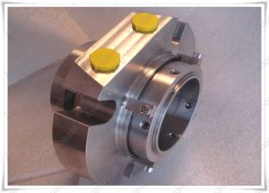 Quality Anga Be2 Mechanical Pump Seal From China Supplier pictures & photos