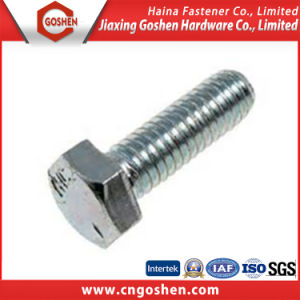 Gold Supplier China Stainless Steel Hex Bolts pictures & photos