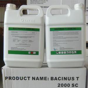 King Quenson High Effective Bacillus Thuringiensis Israelensis China Manufacturer pictures & photos