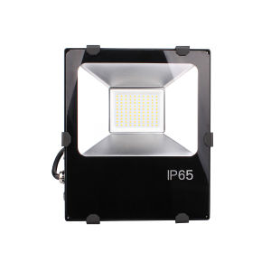 100W LED Flood Light with Philips LED and Weanwell Driver (E334687) pictures & photos