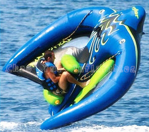 Manta Ray Flying Fish Boat for Water Sports (CY-M1895) pictures & photos