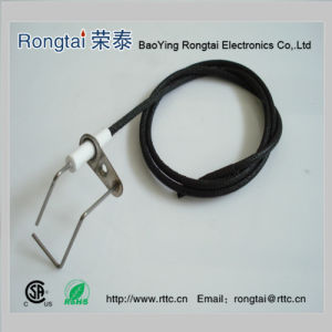Ignition Electrode for Gas BBQ Grill pictures & photos