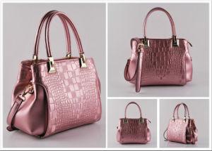 Ladies Hand Bag Party Bag Dinner Bag Women Shopping Bag New Arrivels (NM-W05)