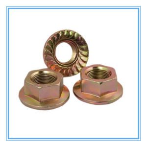 Carbon Steel Hex Flange Nut (DIN6923) pictures & photos