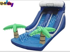 8m Long Inflatable Water Single Slide pictures & photos