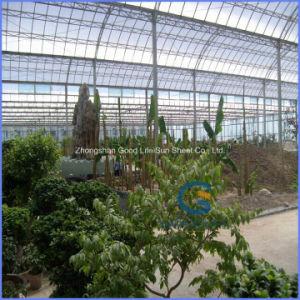 PVC/ Metal/ Composite Polymer/FRP/PE/ Porcelain/Ceramic PC Sheet Greenhouse pictures & photos