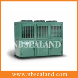 Large-Scale Condensing Unit pictures & photos