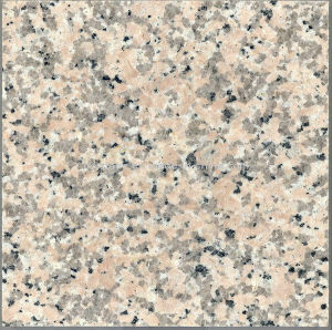 Natural Stone Granite Xi Li Red Slabs for Tiles and Countertops