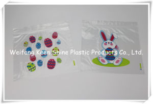 LDPE Reclosable Printing Ziplock Bag Zipper Bag Grip Seal Bag pictures & photos