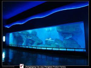 Cast Acrylic Panel for Aquarium Window pictures & photos