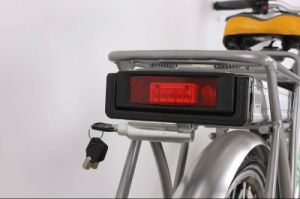 Chinese Cheap CE Approved Electric Bike with Rear Rack pictures & photos