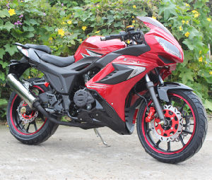 250cc 300cc New Street Sport Racing Motorcycle (SY250-3) pictures & photos