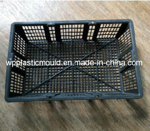 Plastic Basket Cage for Abalone / Sea Cucumber/ Oysters /Seafood Planting (BYK-1) pictures & photos