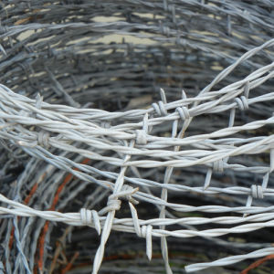 2.0 mm Galvanized Barbed Wire From China pictures & photos