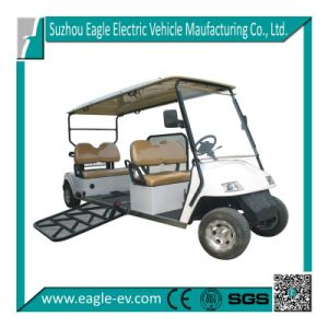 Handicapped Golf Cart, Eg2068t, with Hydraulic Ramp Access Wheelchair, 48V 5.3kw, Plastic Body, Fiberglass Roof pictures & photos