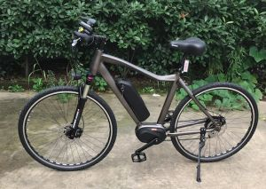 36V 250W 8 Speed Electric Bicycle pictures & photos