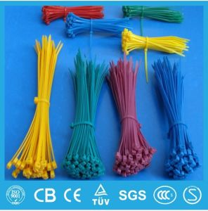 RoHS Nylon Cable Ties, UL Nylon Cable Ties, Superior Quality Cable Ties pictures & photos