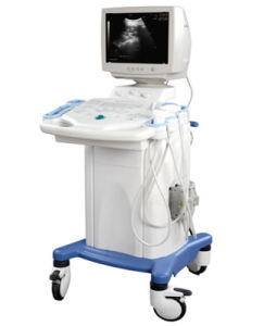 Full Digital Trolley Ultrasound Scanner/Ultrasound Machine (RUS-9000C) - Martin pictures & photos