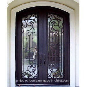 High Quality Wrought Iron Double Door (UID-D071) pictures & photos