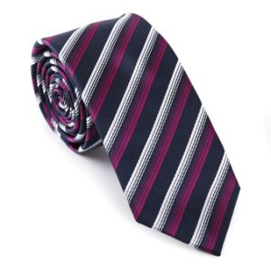 New Design Silk Stripped Necktie (605144-10) pictures & photos