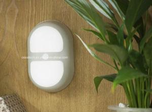 PIR Motion Sensor Light pictures & photos