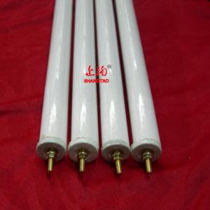 Infrared Quartz Halogen Heating Lamp pictures & photos