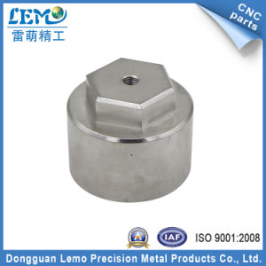 Al6061 Precision Hardware Parts for Factory Equipment (LM-325Z) pictures & photos