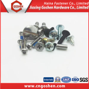 Stainless Steel Pan Head Screw / Flat Head Screw /Countersunk Screw pictures & photos