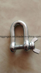 Self Colour Chain End Shackle pictures & photos