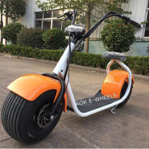 800W Lithium Battery Electric Bike with Fat Tire (MES-014) pictures & photos