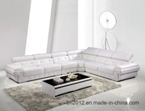 Living Room Genuine Sofa (H3026) pictures & photos