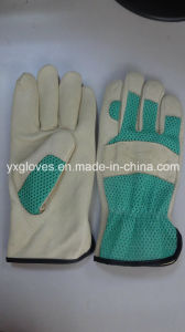 Green Garden Glove-Leather Working Glove-Safety Glove pictures & photos