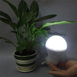 Blackout Use Emergency LED Bulb