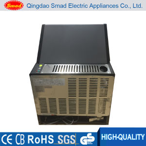 Hotel & Home Noiseless Gas/Kerosene/Electric Absorption Chest Freezer pictures & photos