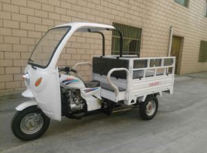 Three Wheel Covered India Cabin Cargo 250cc Three Wheel Motorcycle pictures & photos