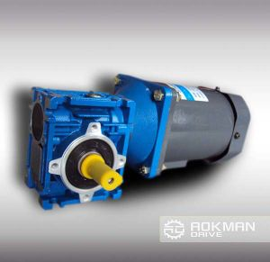 High Performance Nmrv Series Worm Geared Motor pictures & photos