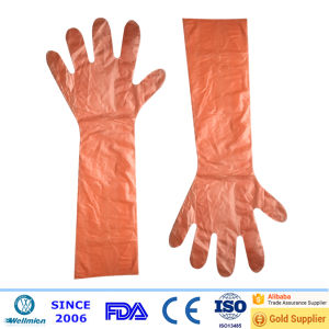 Long Arm Plastic Slaughtering Gloves pictures & photos