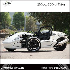 Ztr Trike 250cc EEC Certificate pictures & photos