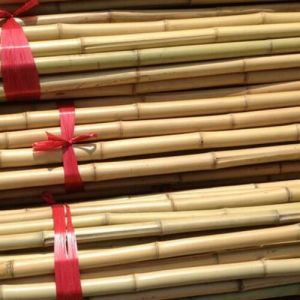 Nutural Bamboo Pole for Agricultural pictures & photos