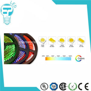 12V 240 LED Per Meter SMD 3014 LED Flexible Strip pictures & photos