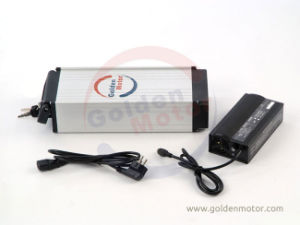 LiFePO4 Lithium Battery for Electric Bike 48V 10ah Over 1000 Cycles! pictures & photos