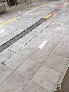 Carrara White Marble Thin Tiles pictures & photos