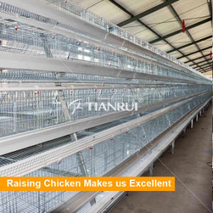 Automatic A type egg Chicken Layer Battery Cage pictures & photos